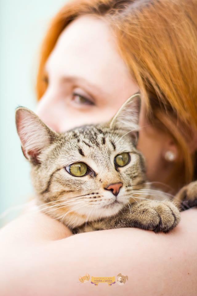 """Mulher abraça a gatinha Mégara, de 9 meses, durante o """"Domingo do Amassa Gato"""", em 27 de setembro (Foto: Reprodução/Confraria dos Miados e Latido)"""