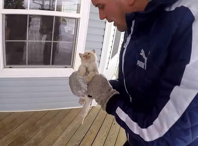 Branden Bingham encontrou o filhote praticamente congelado na neve (Reprodução/YouTube)