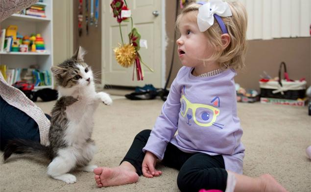 A menina Scarlette, 2, com a gatinha Holly, que agora foi rebatizada de Doc (Reprodução/Facebook/Smiles For Scarlette)