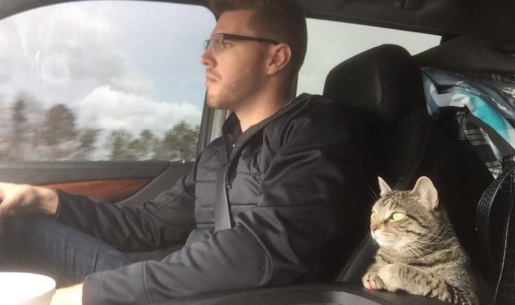 Nala viaja ao lado do seu humano, Freddie Freeman, da Geórgia até a Flórida (Reprodução/Twitter/@chelseafree5)