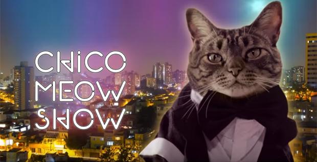 """Chico, estrela do """"Cansei de Ser Gato"""", na abertura do seu programa, """"Chico Meow Show"""" (Reprodução/YouTube)"""