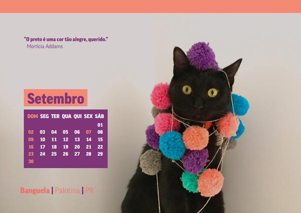 Calendário 2018 só com gatos pretos do projeto Felinos Urbanos