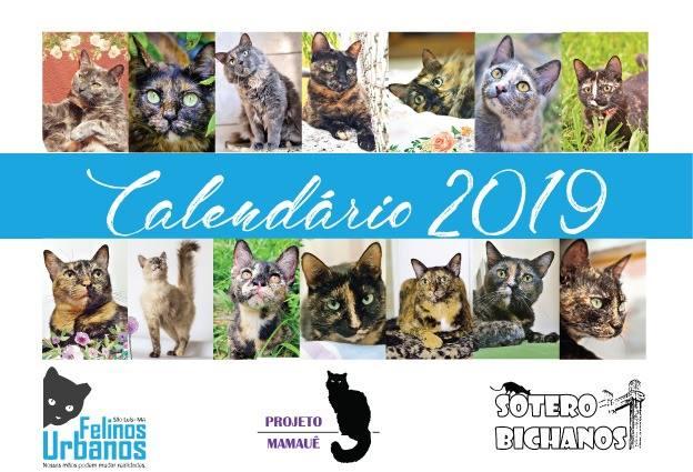 Capa do calendário do projeto Felinos Urbanos