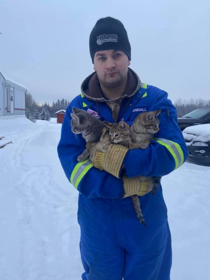 Kendall Diwisch depois de salvar os três gatinhos (Facebook/kendall.diwisch)